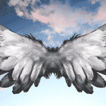 Learn how to Release God's Angels in your lif