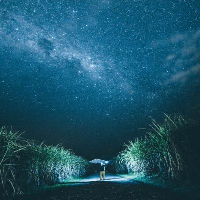 Does God Speak to Us in Dreams?
