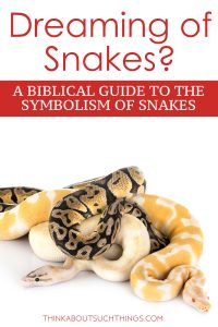 Dreaming of snakes - Spiritual meaning