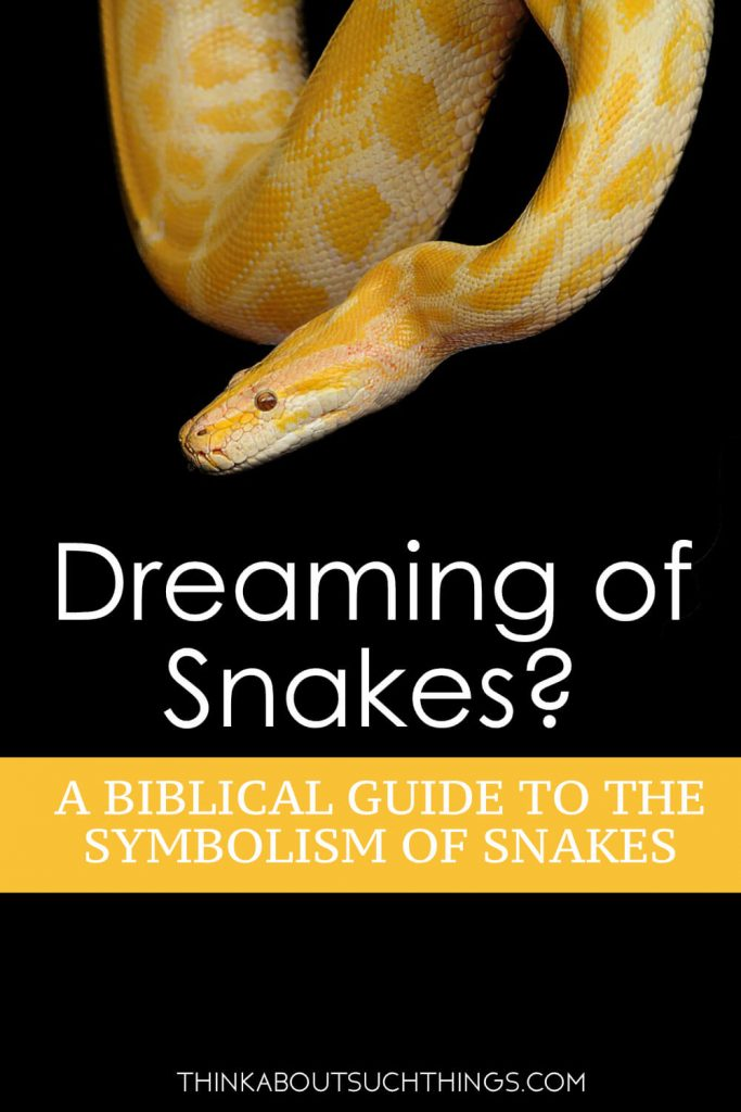 The Biblical Meaning of Snakes in Dreams | Think About Such