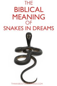 Biblical and spiritual meaning of snakes in dreams