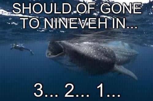 Jonah and the whale meme