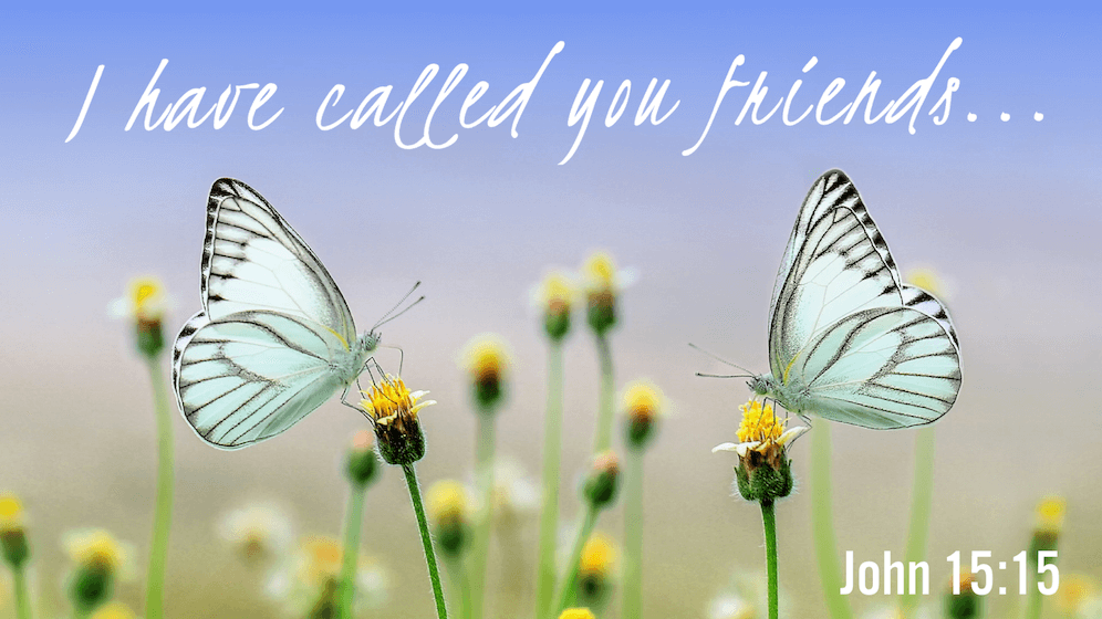 """I have called you friends"" John 15:15 bible verse about friendship with Jesus"