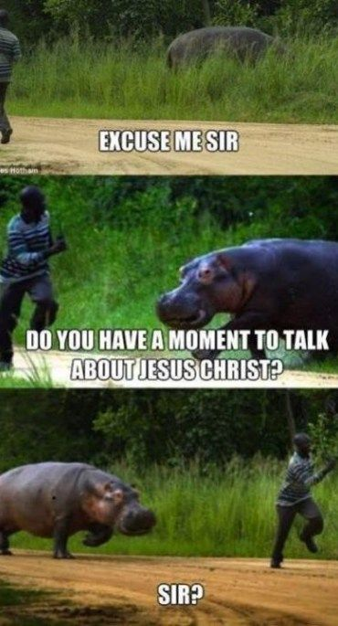Funny Christian Meme with hippo