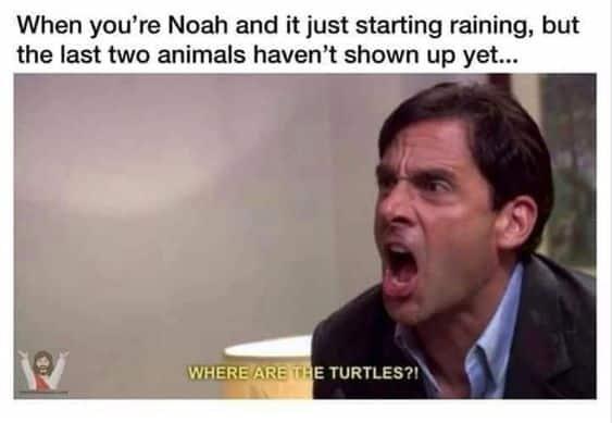 Noah's ark meme Bible