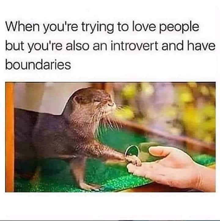 Introverts meme