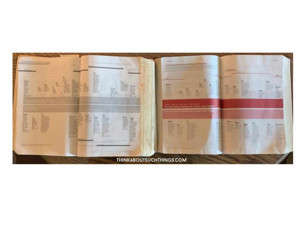 Bible Timeline from Life Application Bible