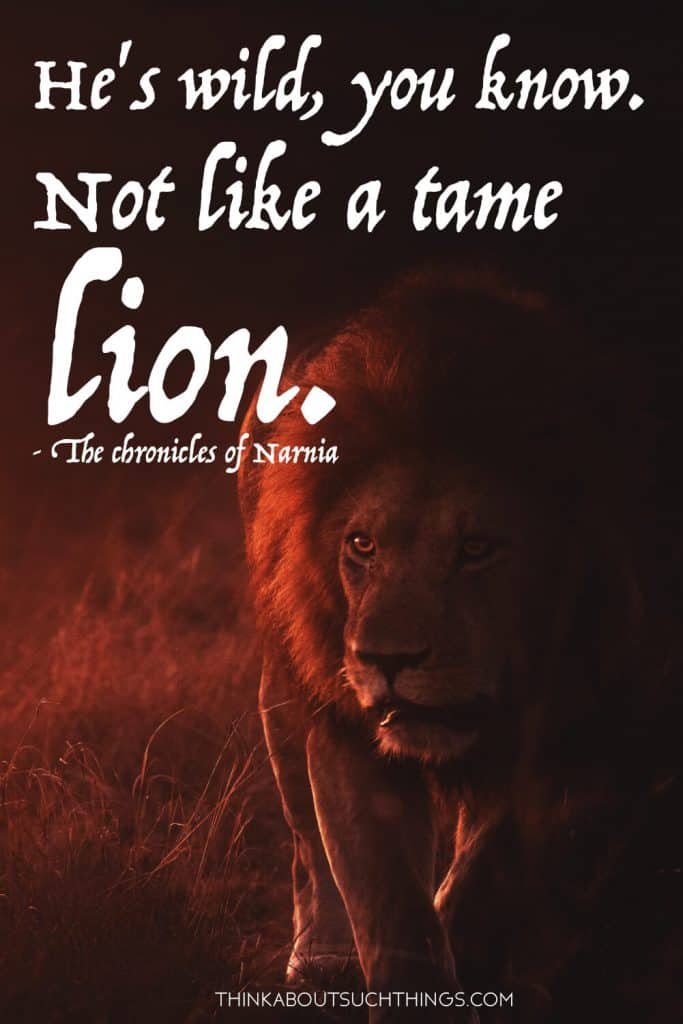 "Aslan Quotes - ""He's wild you know. Not like a tame lion"" by C.S Lewis"