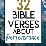 Bible Verses about Perserence Pin 1