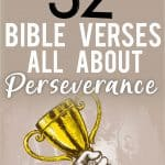 Verses on Perseverance