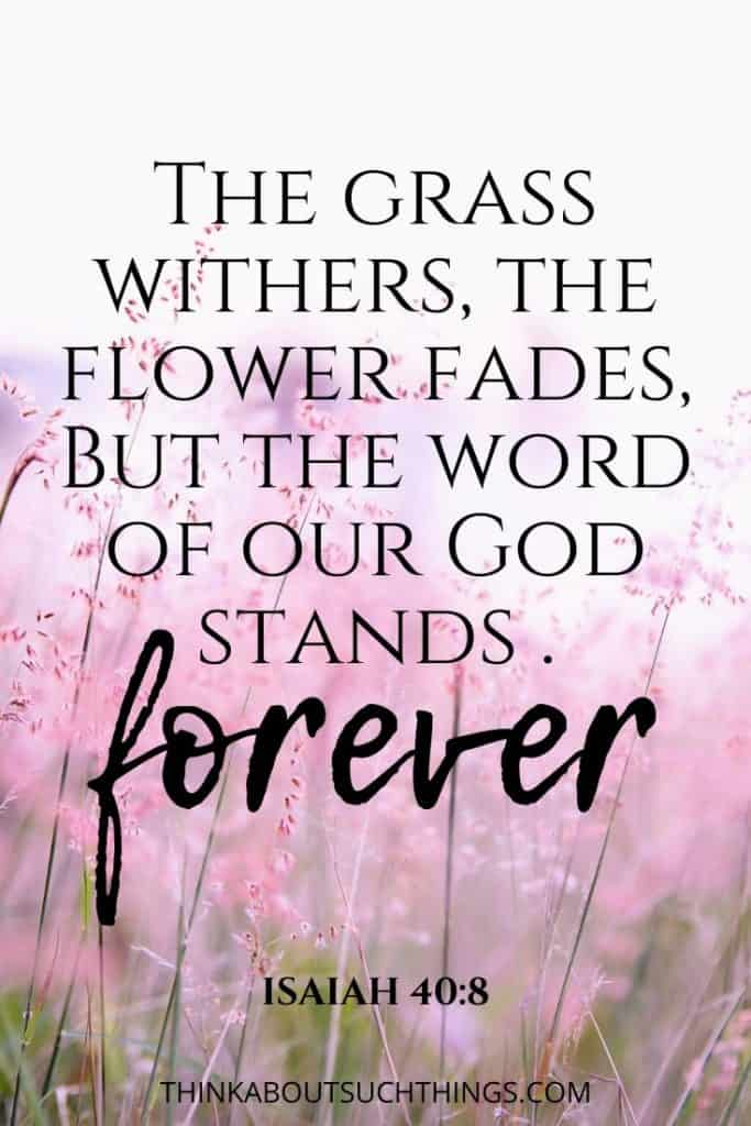 Isaiah 40:8 - flowers fade but the word of God stands forever