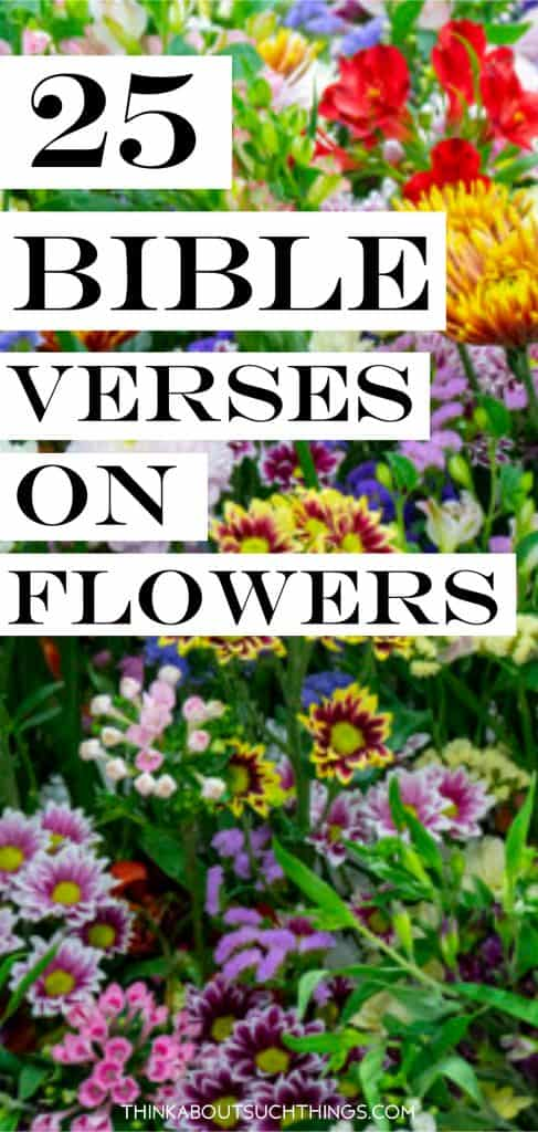 25 bible verses about flowers pin