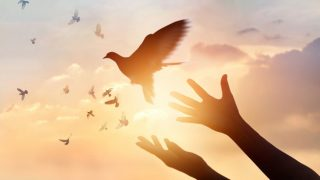 44 Powerful Bible Verses about Peace