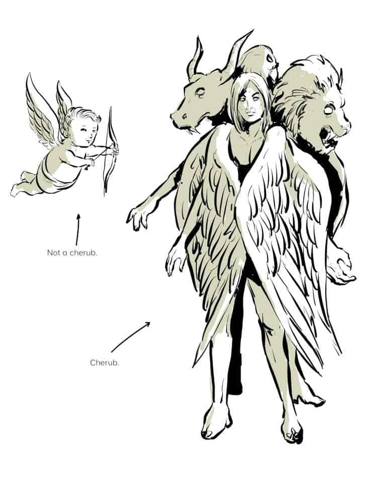 Putti angel vs Cherub Angel