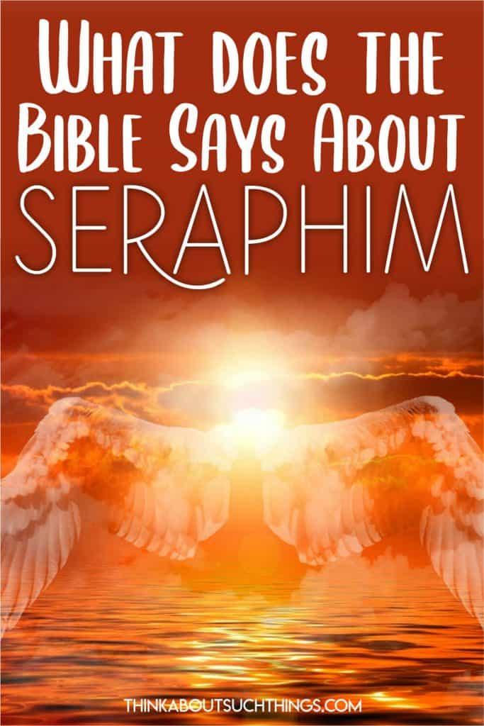 Seraphim Bible Study