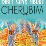Cherubim - Bible Study