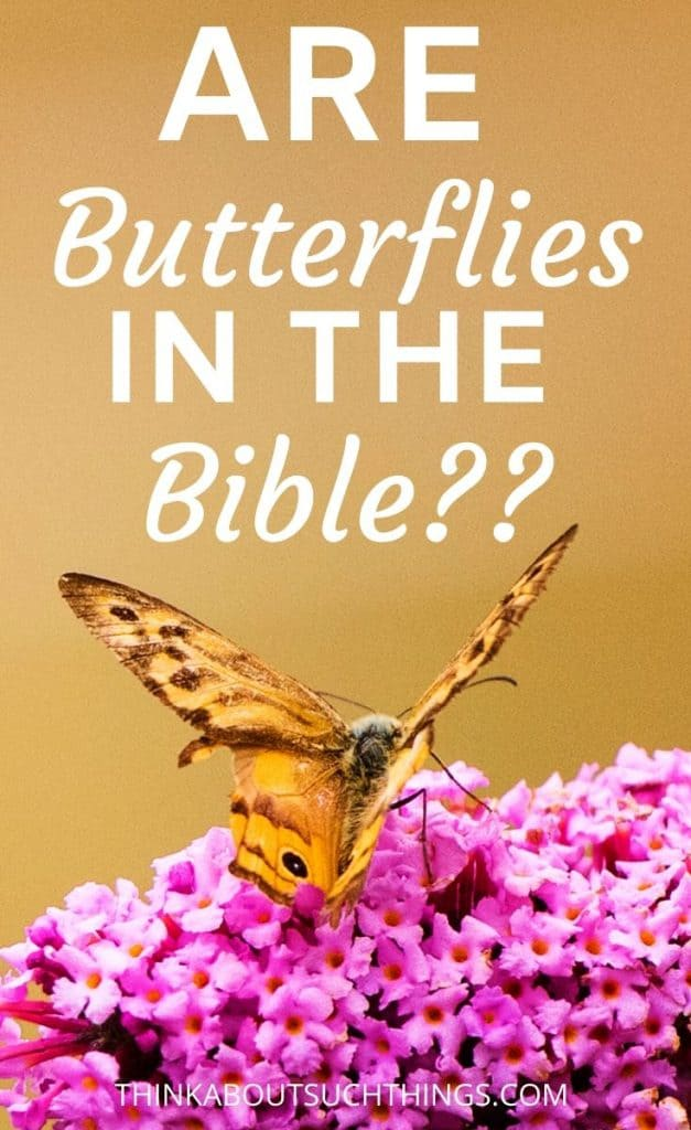 Are Butterflies in the Bible