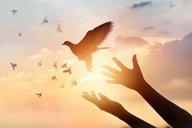 9 Powerful Prayer Points for Spiritual Growth