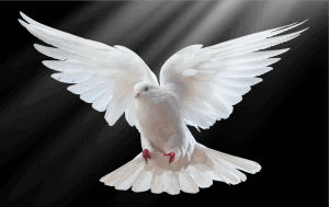 The gifts of the Holy Spirit in the Bible