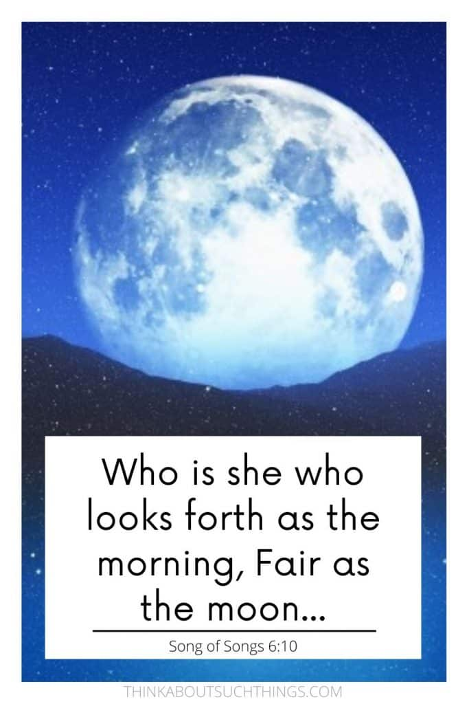 Bible quotes about the moon - Song of Songs 6:10