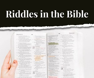 bible riddles and brain teasers