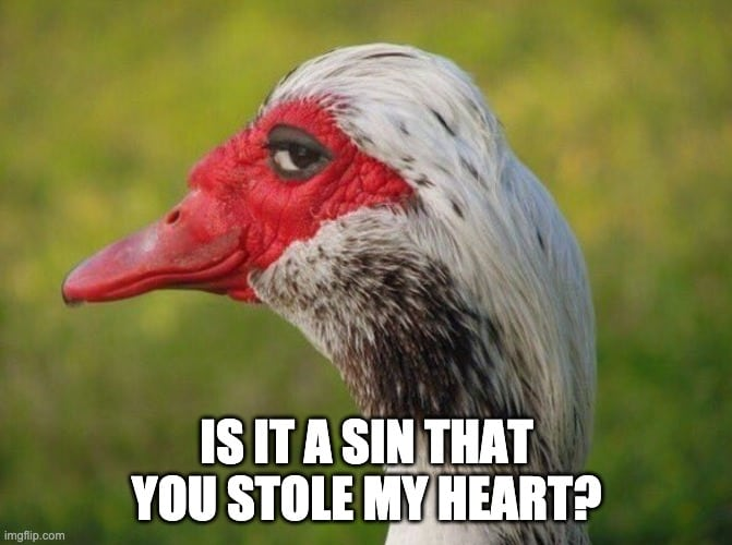 Funny Christian Pickup Lines