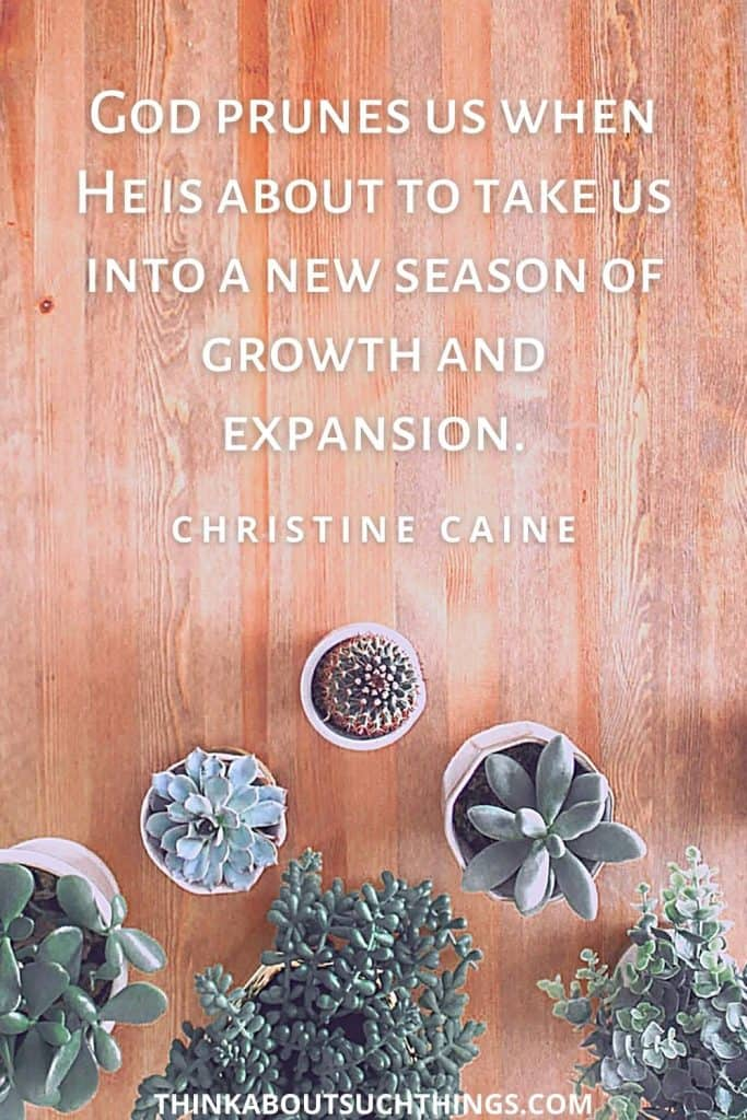 Pruning Quote by Christine Caine