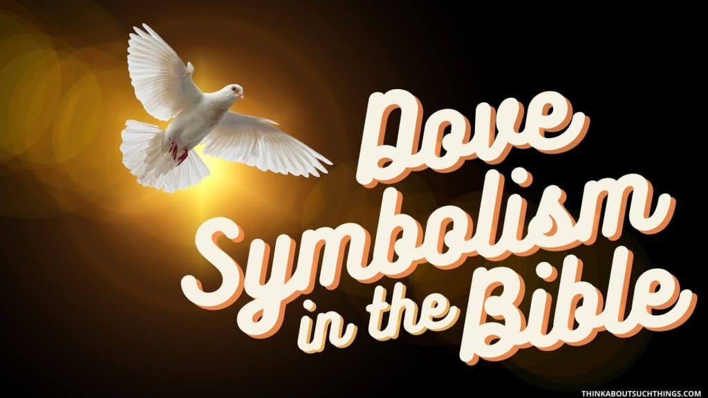 Dove symbolism in the Bible
