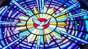 Dove Symbol - Stain glass