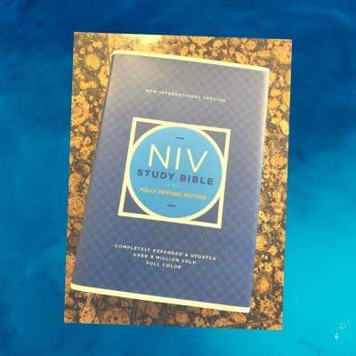 The NIV Study Bible Review