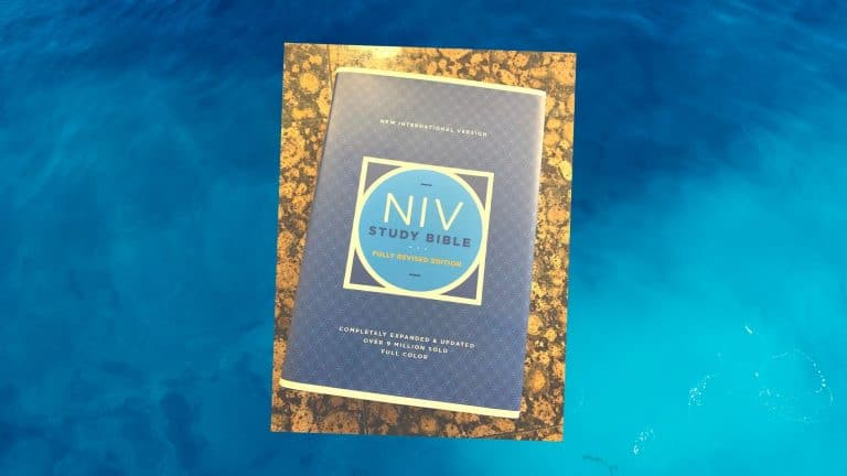 The NIV Study Bible Review