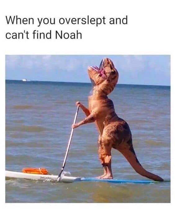 Noah's Ark Meme