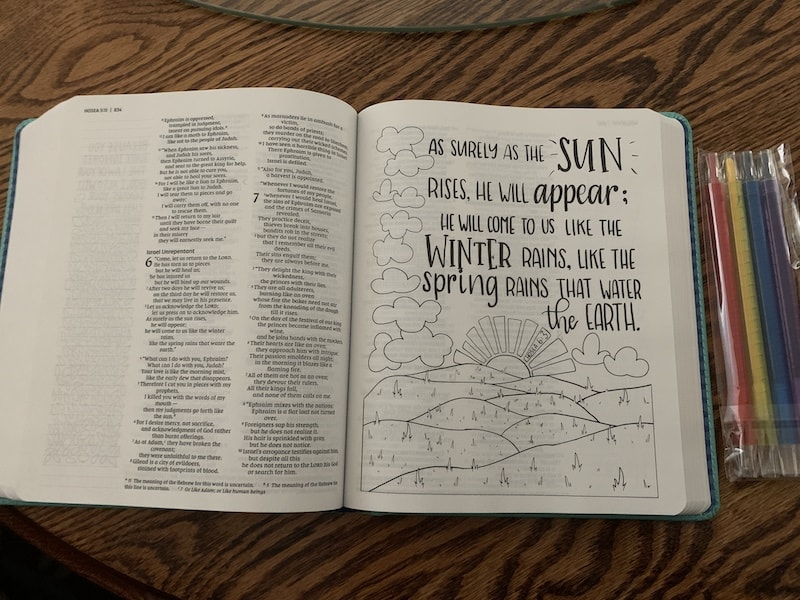 full page illustration in Beautiful Word Bible for girls