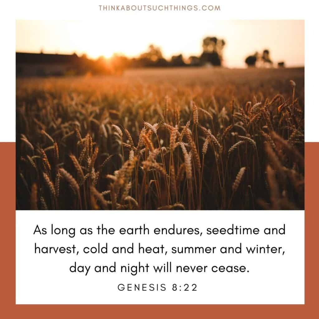 Bible verses about autumn Genesis 8:22