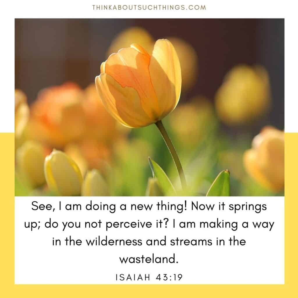 Springtime Bible verses Isaiah 43:19