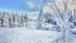 bible verses about winter